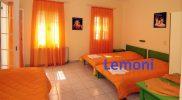 lemoni2019 (3)