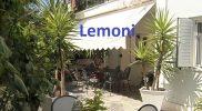 lemoni2019 (9)